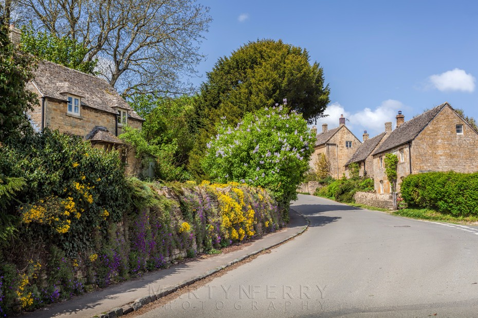 Guiting Power lane with spring flowers