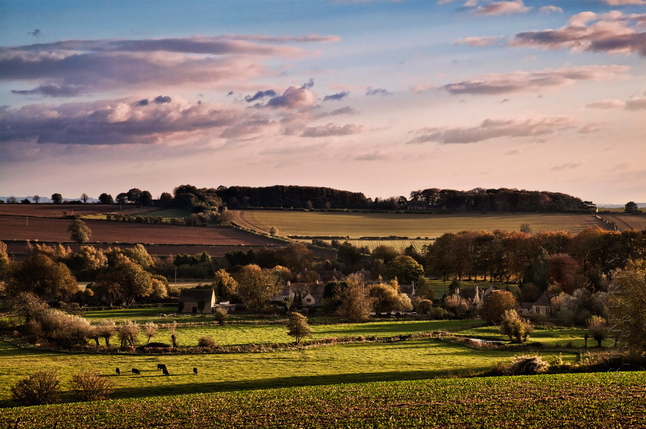 Beautiful Cotswold landscape image of Asthall village at sunset