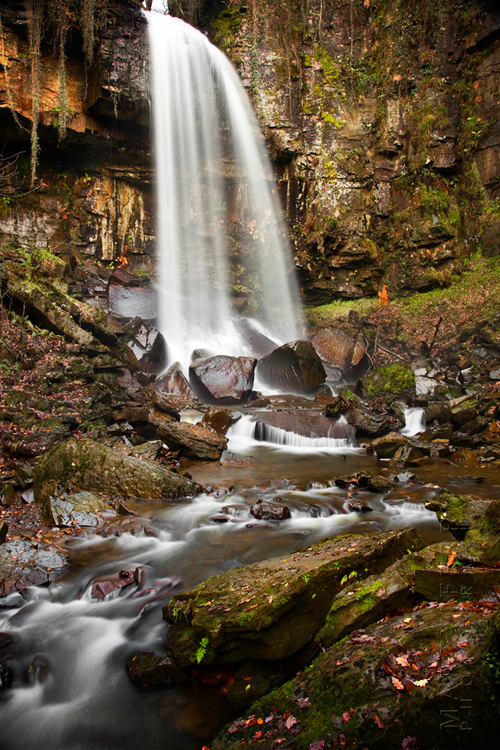 Beautiful image of Melincourt waterfall and surrounding woodland