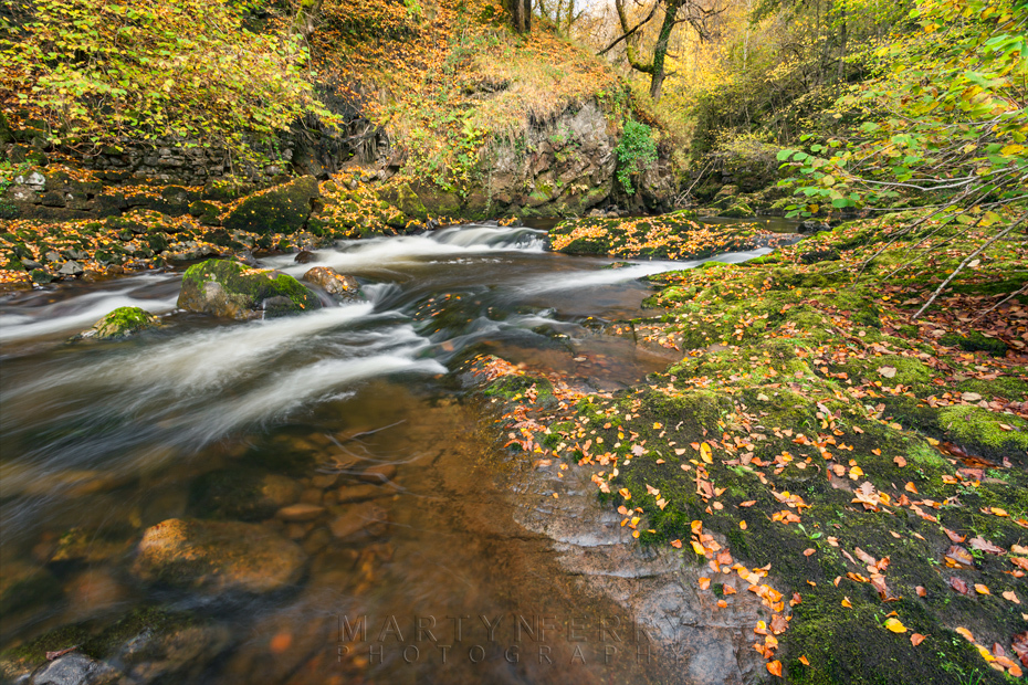 The Afon Mellte streams past under autumn colour