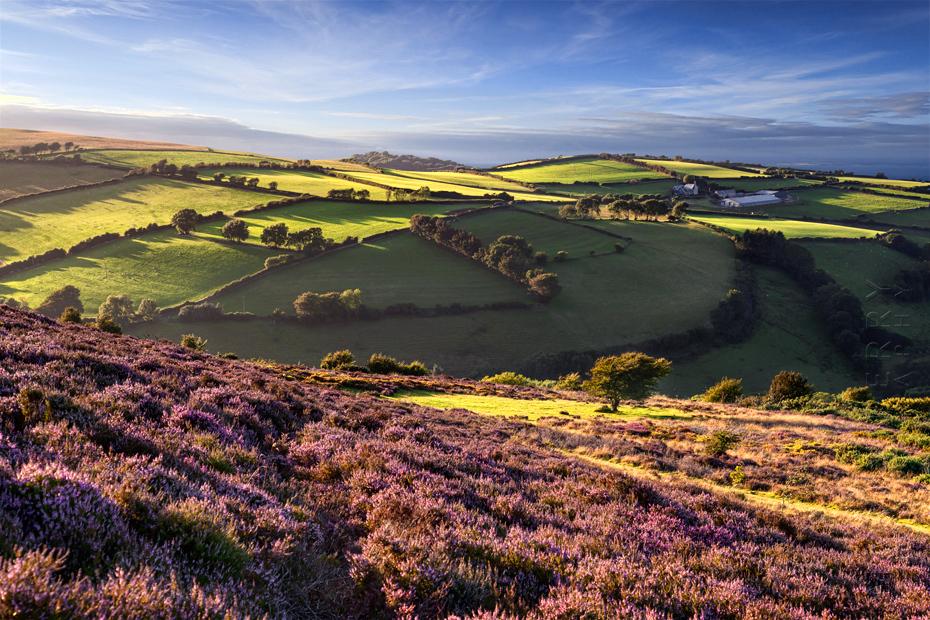 Beautiful light on the Exmoor landscape