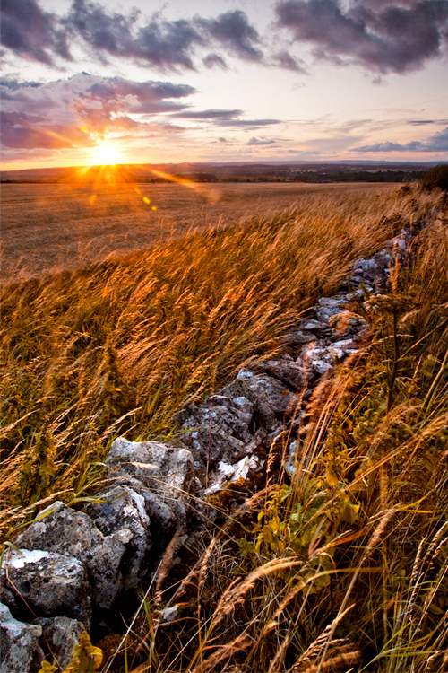 Photo of an ancient Cotswold stone wall at sunset