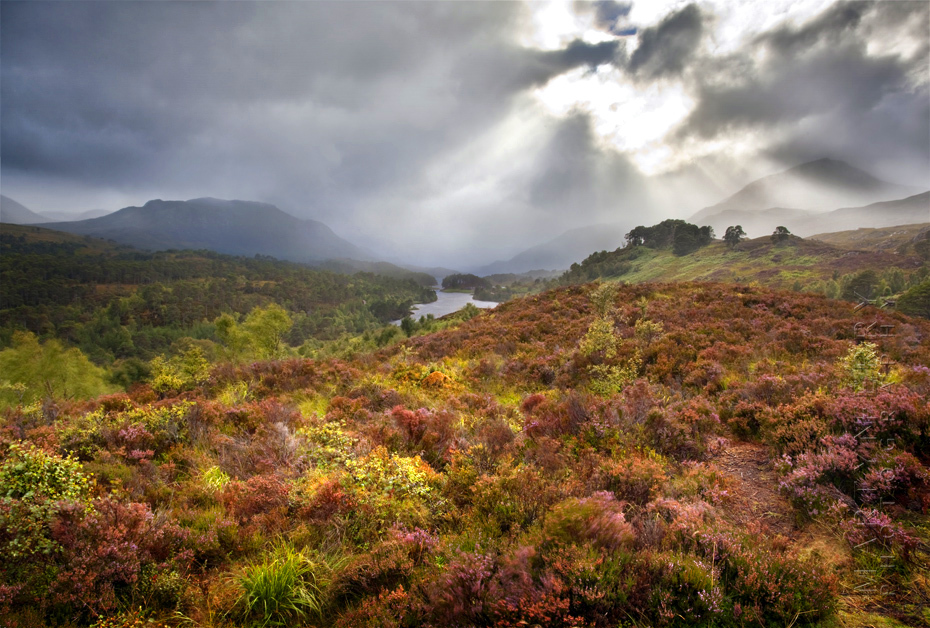 Stunning photo of Glen Affric under a stormy sky pierced with sunbeams