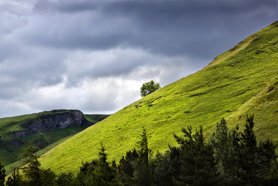 Image of a lone tree on the slopes of Mam Tor under clouds