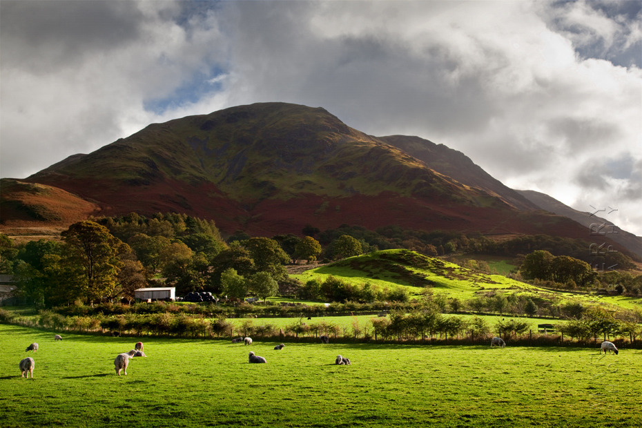 Red Pike at Buttermere in the morning sunlight