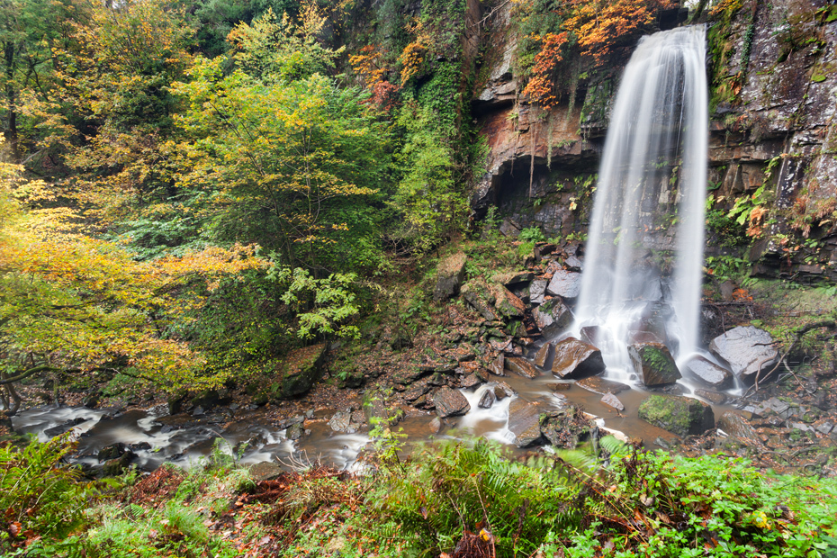 Melincourt Falls in Waterfall Country at autumn