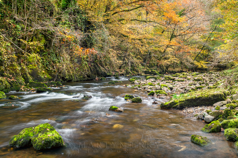 Looking along the River Mellte in autumn