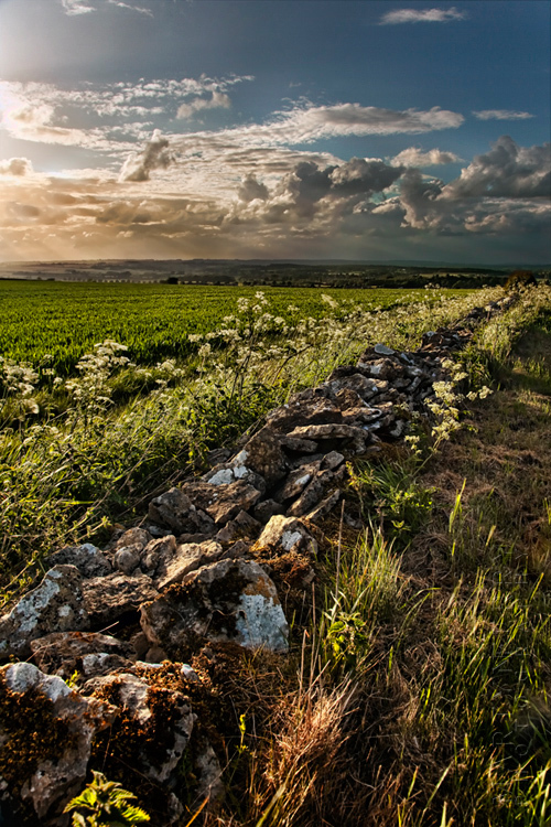 Landscape image of a stone wall and Cotswold view at sunset