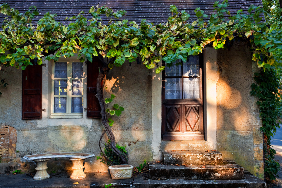 Beautiful dappled sunlight in this image of a maison in St Leon sur Vezere