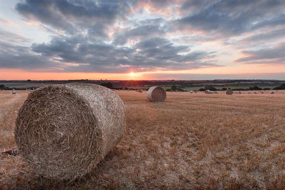 Beautiful Cotswold landscape of hay bales at sunset