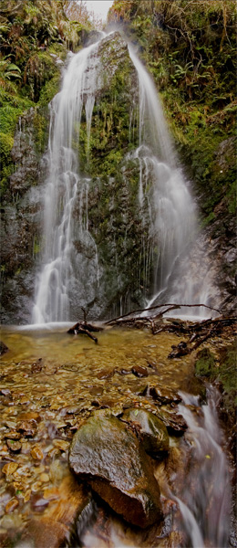 Dhoon Glen - Manx National Glens