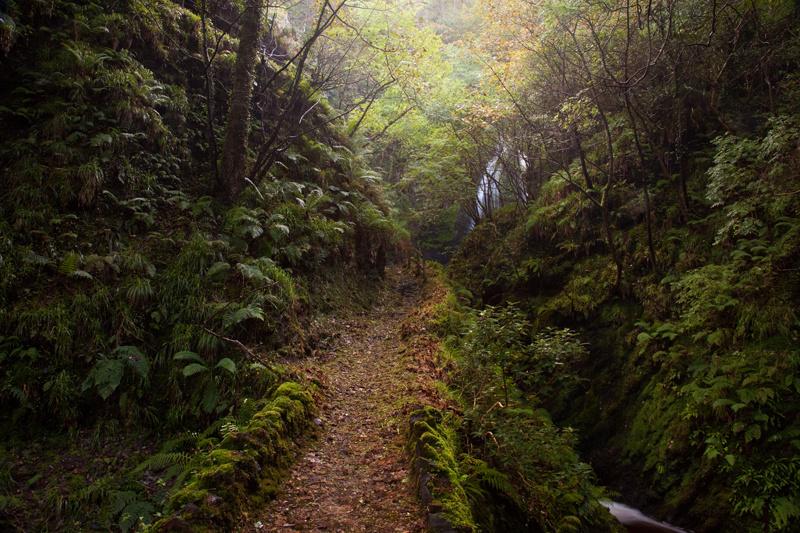 Deep Dhoon - Manx National Glens