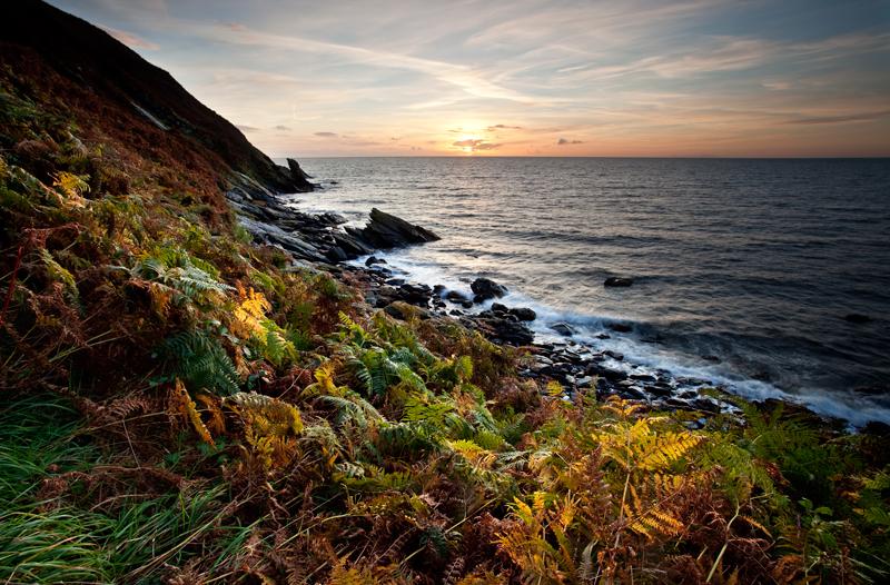 Sunset Ferns - Isle of Man Seascapes/Coastal