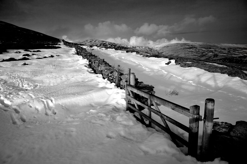 Snow Way - Mann in Mono