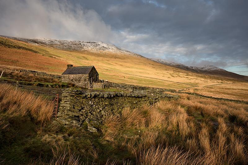 Corrany Sheep Pen - Isle of Man Landscapes
