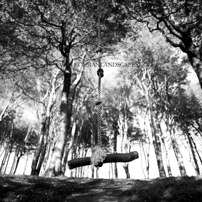 Summer Ends - Mann in Mono