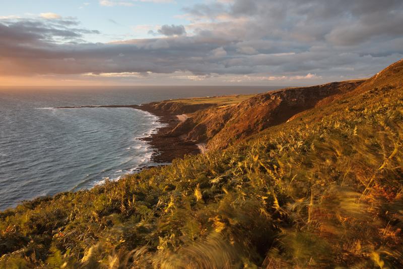 Blowing Bracken - Isle of Man Seascapes/Coastal
