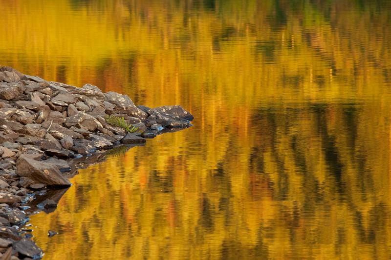Liquid Gold - Isle of Man Landscapes