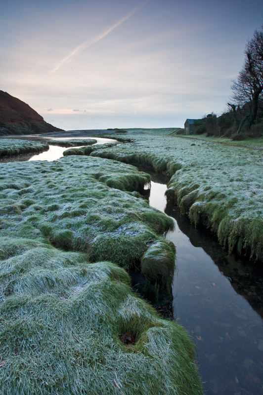 Frosted Grass - Isle of Man Landscapes