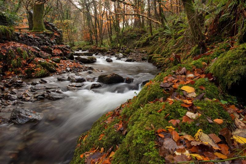 Glen Roy - Manx National Glens