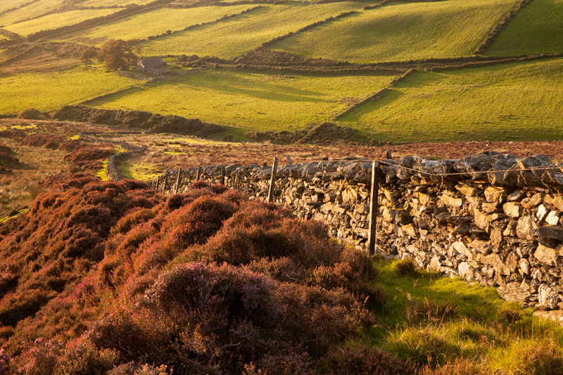 The Last Days of Summer - Isle of Man Landscapes