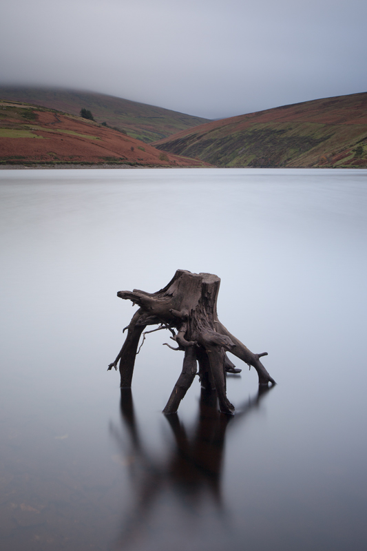 Stumped - Isle of Man Landscapes