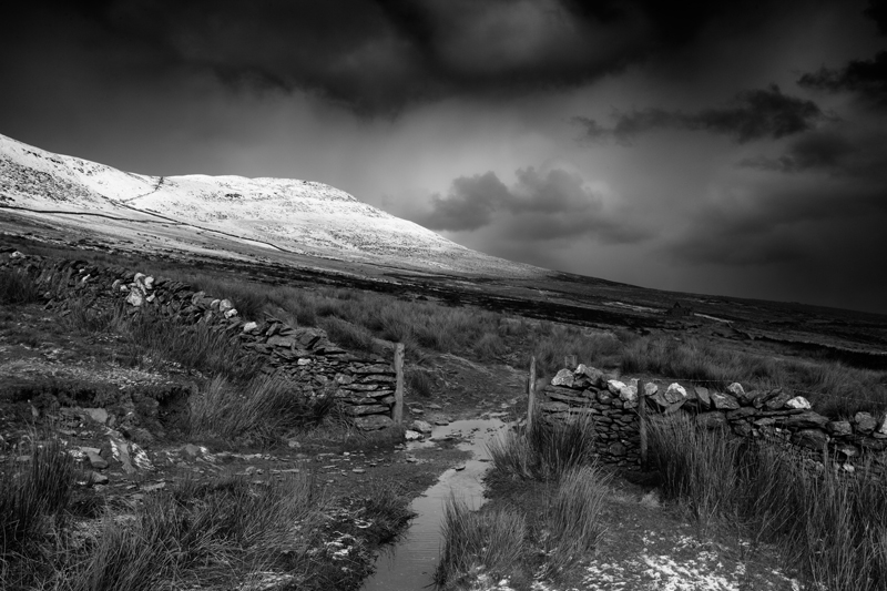 Storm Front - Mann in Mono