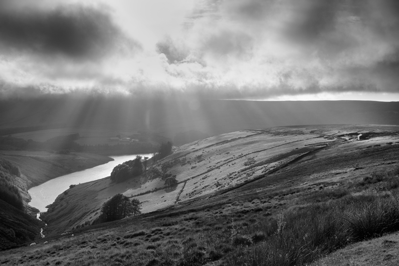 Sulby Rays - Mann in Mono