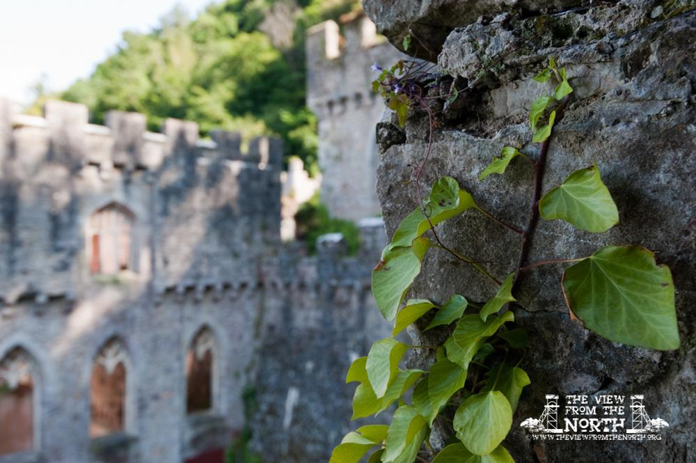 Gwrych Castle 12 - Gwrych Castle