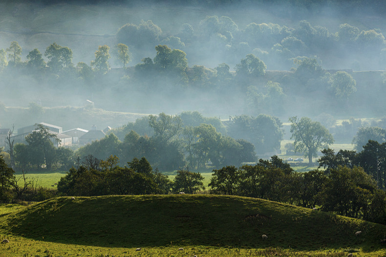 Mist in the Dales - Landscapes
