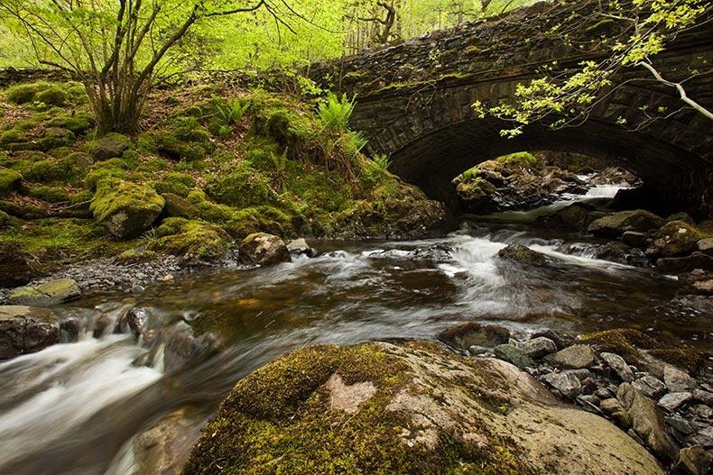 Beck near Thirlmere 2 - Lake District