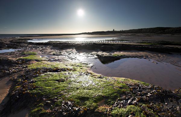 Dunstanburgh Sands II - Landscapes