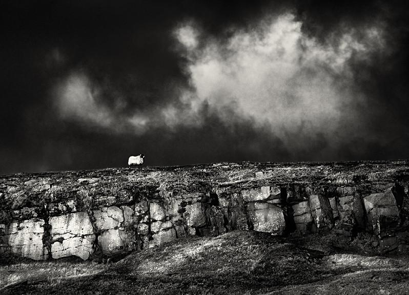 Sparse Yorkshire Landscape