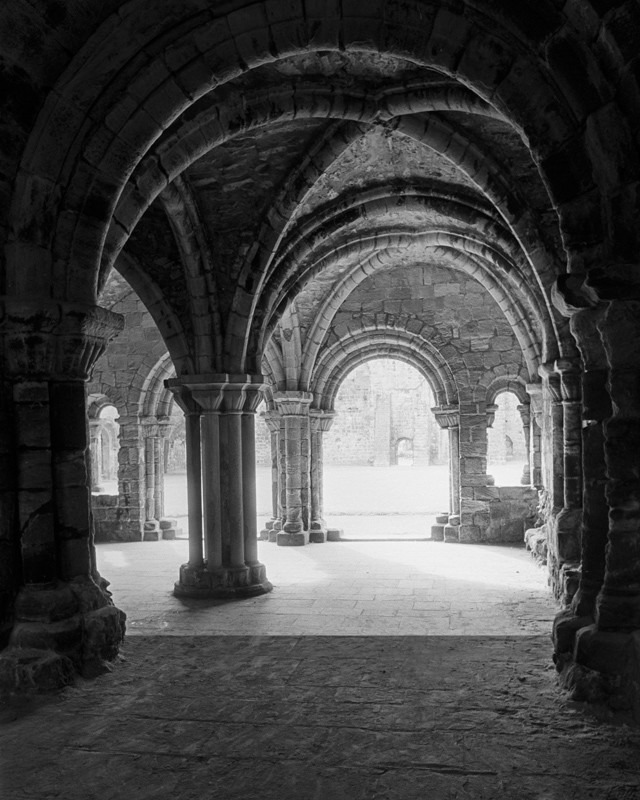 Arches and Light - Architecture