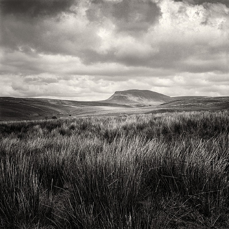 Moorland to Pen-y-Ghent