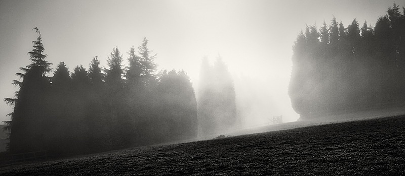 Light and Mist - Panoramic