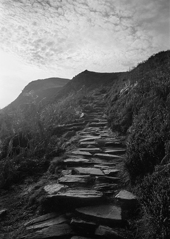Path to Cat Bells - Landscapes