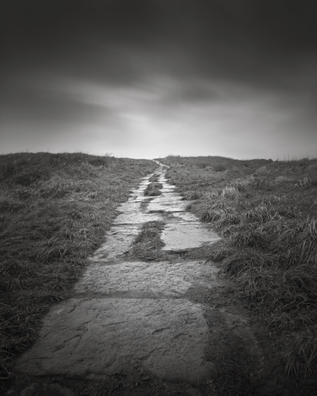 Granite Path, Otley Chevin - Trees, Fields and Landscapes