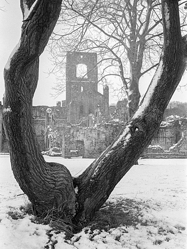Black and White Photograph of Kirkstall Abbey in Winter - Architecture