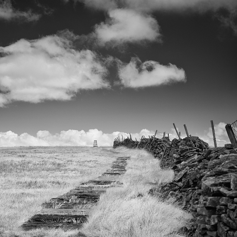 Path to Buckden Pike, Infrared (square format) - Infrared