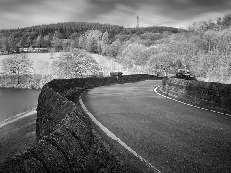 Winding Road, Infrared - Infrared