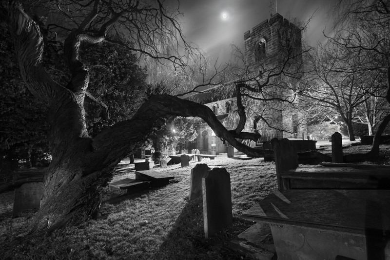 Otley Church Old Tree - Otley and Ilkley at Night
