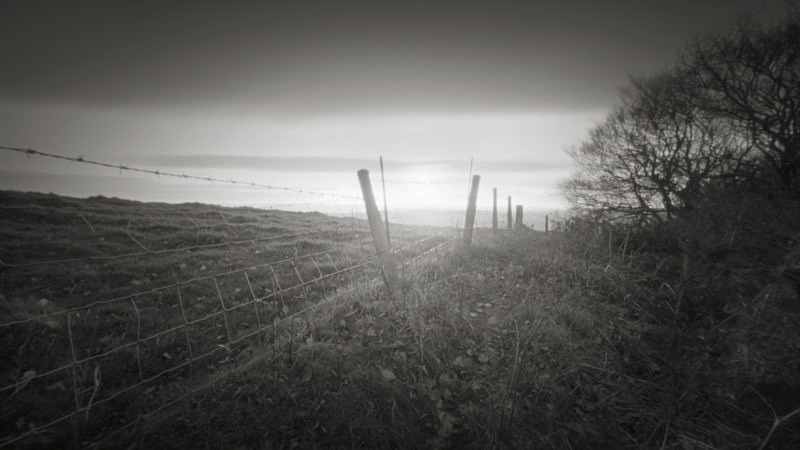 Wire Fence, Otley Chevin - Trees, Fields and Landscapes