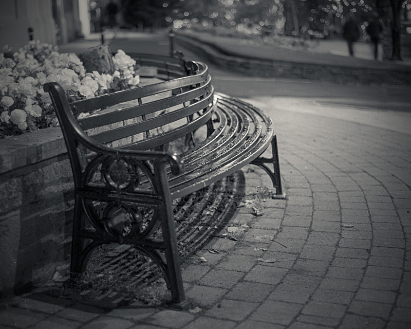 Bench, Ilkley - Otley and Ilkley at Night