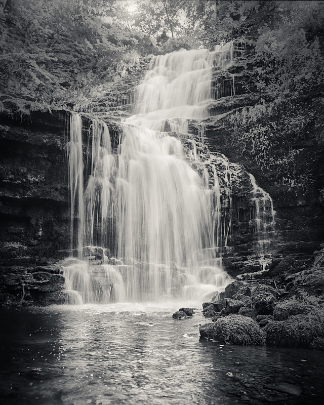 Scaleber Force - Water