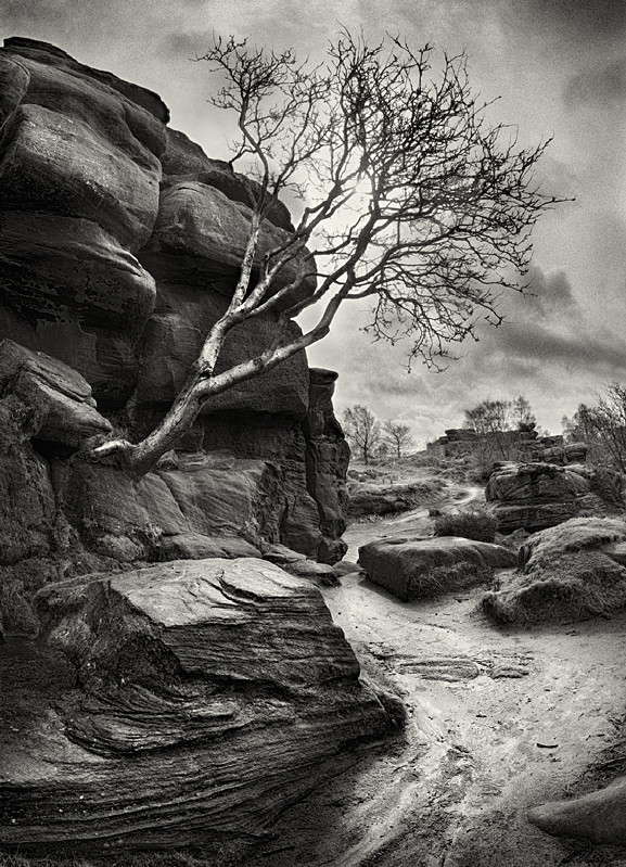 Brimham Rocks in Black and Whie