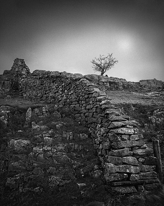 Dry Stone Wall Yorkshire Dales - Landscapes