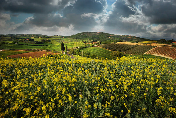 Storm Approaching - Tuscany