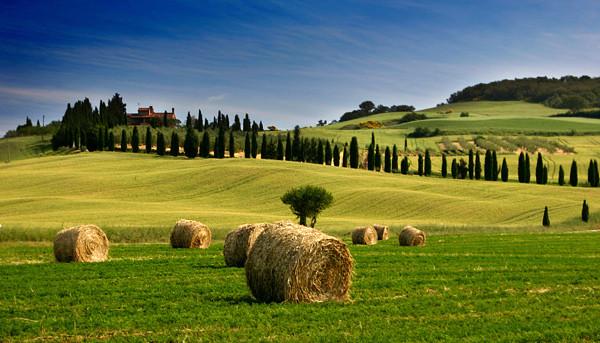 Tuscany Countryside - Tuscany