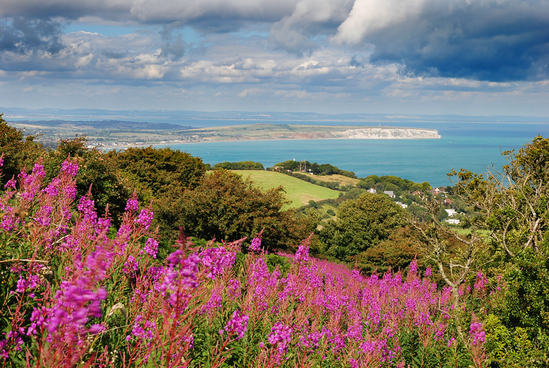 z2134 A Summetime View, Ventnor Down - Ventnor to St Catherine's inc Bonchurch & Whitwell